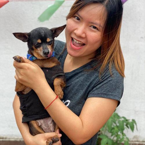 Van at Vietnam Animal Aid and Rescue